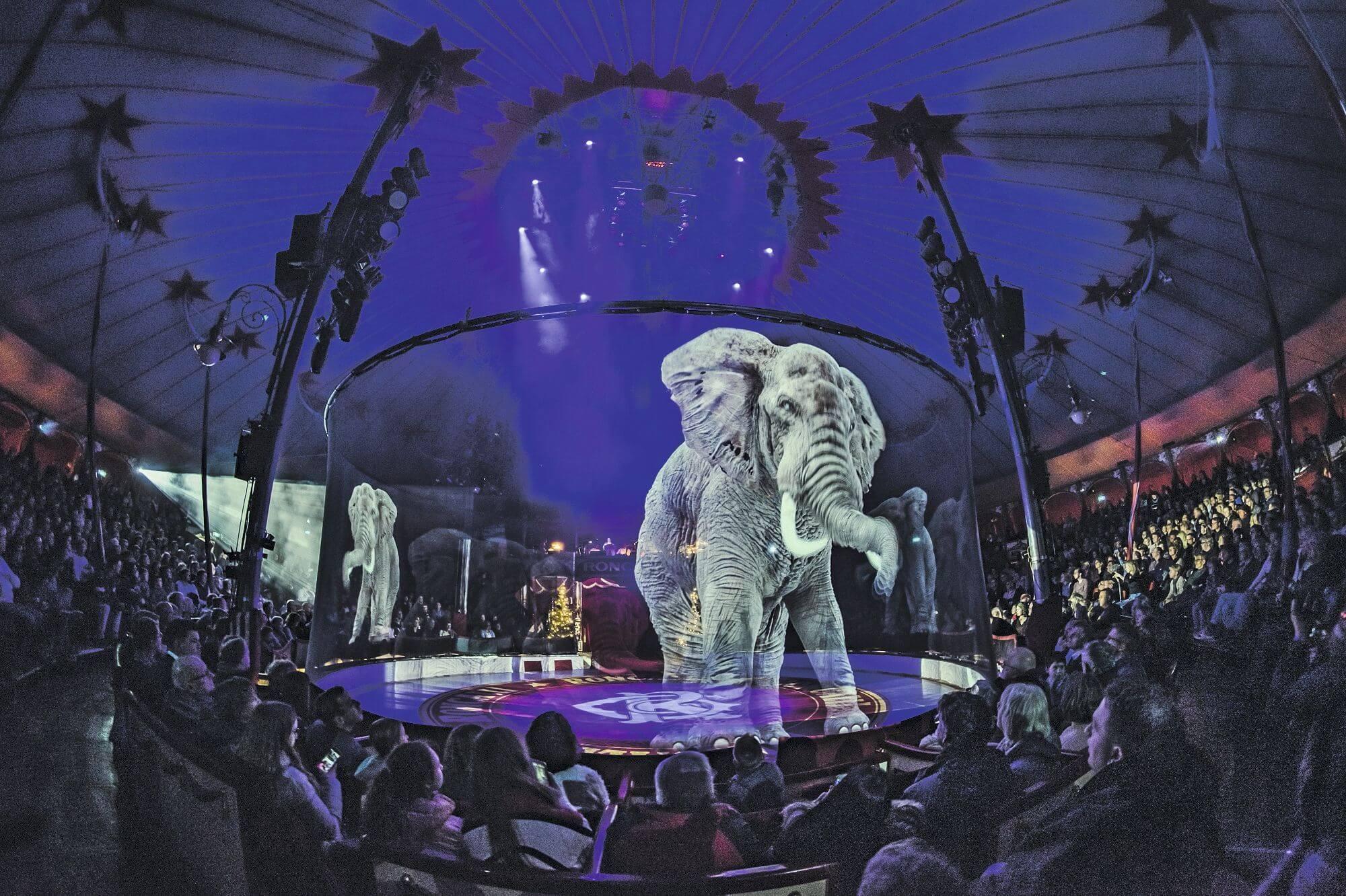 https://hologramme.org/wp-content/uploads/2019/09/Hologrammes-Cirque.jpg